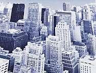 Tejido panot New York