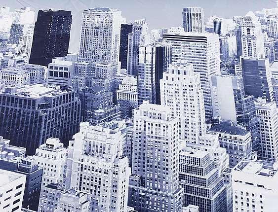JVR - Tejido panot New York