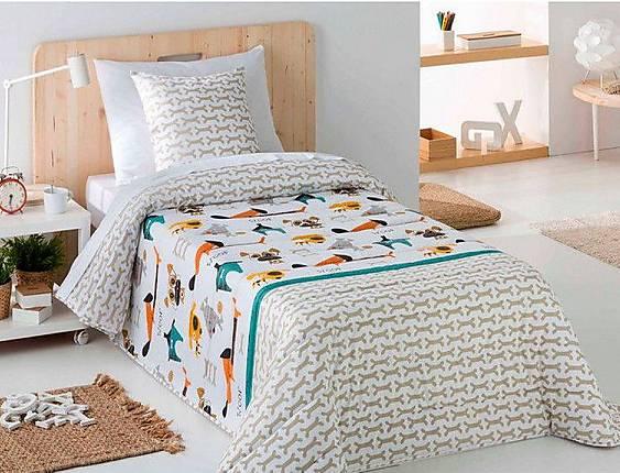 Sandeco - Conforter Bouti Dogs